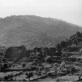 Les Thomazes en 1953